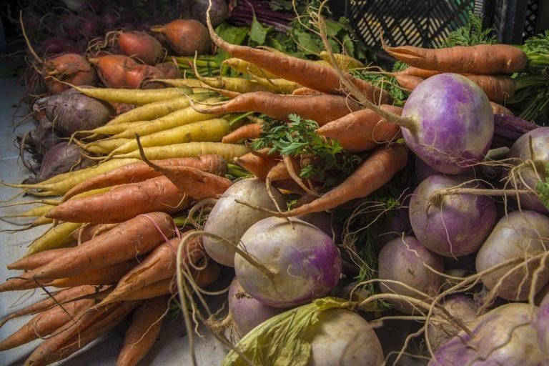 Dlaczego stosowanie fungicydów jest w rolnictwie konieczne